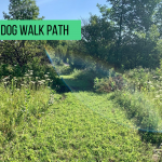 dog walk path for those who want to bring their dogs